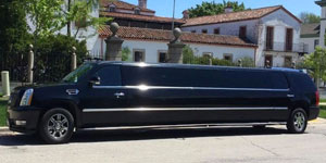 Greendale Executive Limousine Services